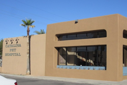 catalina pet hospital pet friendly veterinarian tucson az