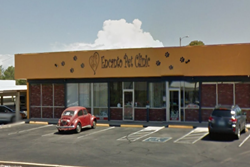 encanto pet clinic pet friendly vet tucson az animal hospital