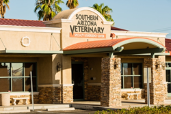southern arizona veterinary specialty and emergency center pet friendly veterinarian in tucson arizona