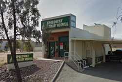 speedway veterinary hospital pet friendly veterinarian in tucson az