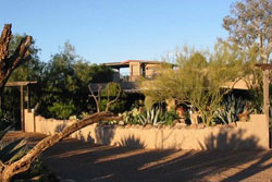 tan colored house with desert landscaping and trees, shadows of trees in foreground, blue skies in background, pet friendly vacation home for rent in tucson