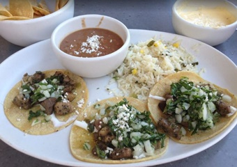 blanco tacos and tequila in tucson, petfriendly, dog allowed restaurants in Tucson, Arizona
