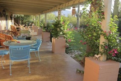 large outdoor patio with plenty of patio furniture, including tables and chairs, plants and greenery, landscaped garden and yard, tucson arizona by owner vacation pet friendly rental home
