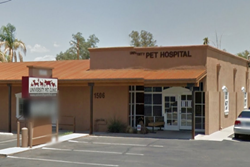 university pet clinic pet friendly vet in tucson az
